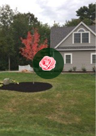 Seasonal Lawn Care Services Scarborough, Maine